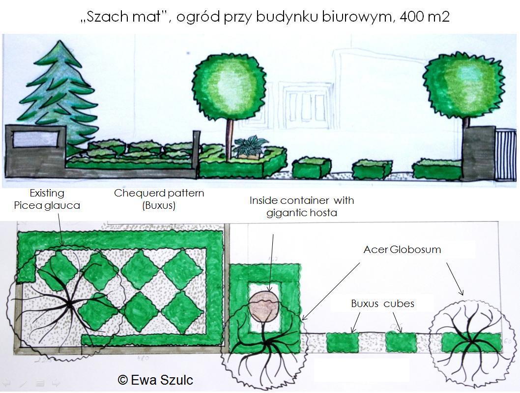 projekt-ogrodu-6