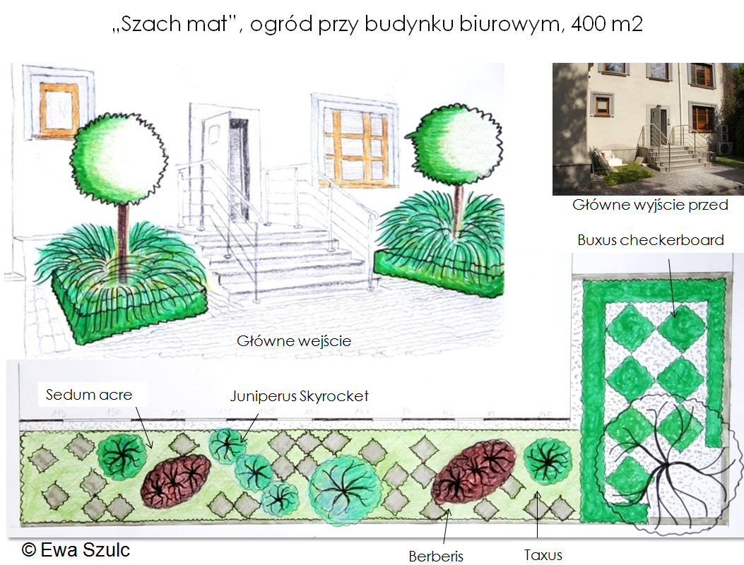projekt-ogrodu-7
